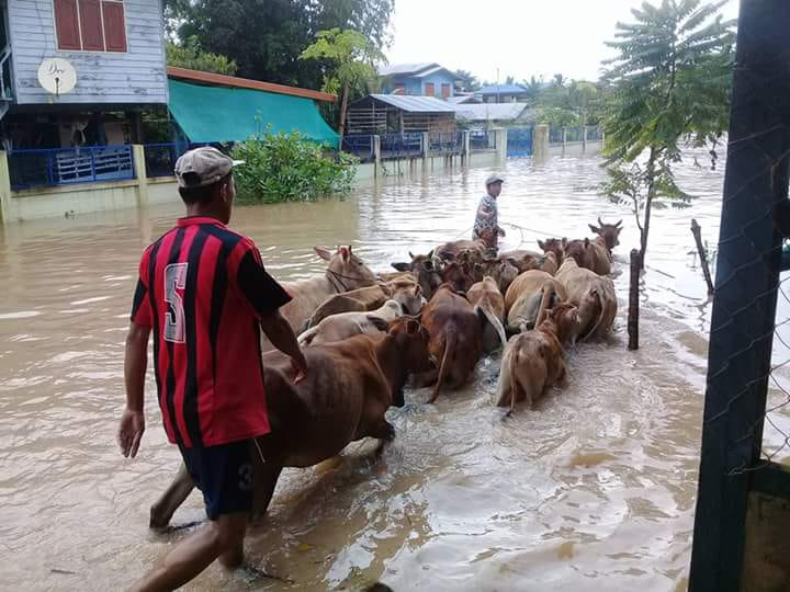 Laos Flooding